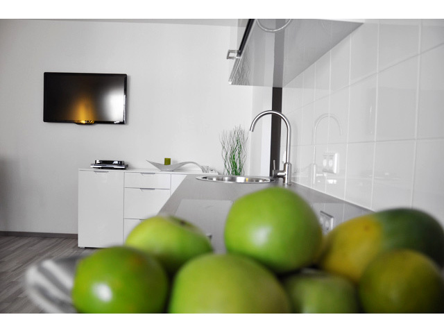Kitchen, Apartment Vienna Austria - Hellwagstrasse TAV